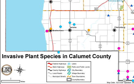 Calumet Invasive Species